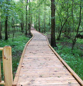 Alcovy Conservation Center Boardwalk