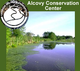 Alcovy Conservation Center