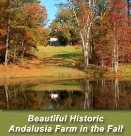 Andalusia Farm in the fall