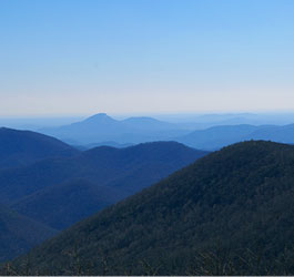 Georgia Mountains Wilderness