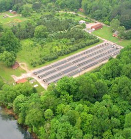 Buford Trout Hatchery