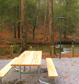 Cooper Creek Campground Campsite