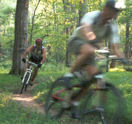 Biking on Dauset Trails