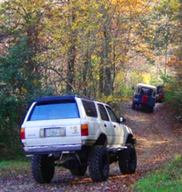 Forest OHV Trail