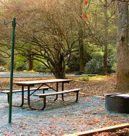 Frank Gross Recreation Area Campsite