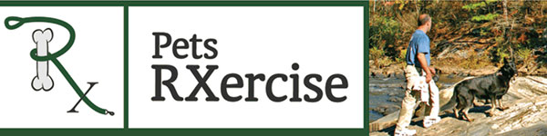 Exercise for dogs at GA State Parks