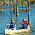 Canoeing at George L Smith State Park