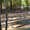 Picnic Area at George L Smith State Park