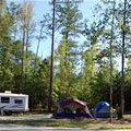 Campsite at Hart State Outdoor Recreation Area