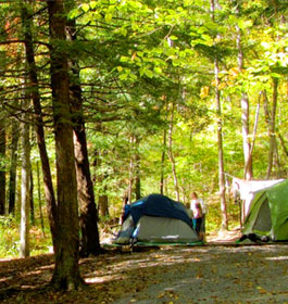 Hickory Gap Camgroud Campsite