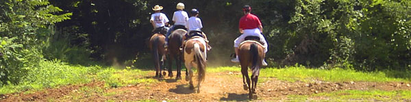 Horseback riding in Georgia forest