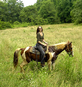 Horseback Riding in Field