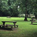 Picnic area at Indian Springs State Park
