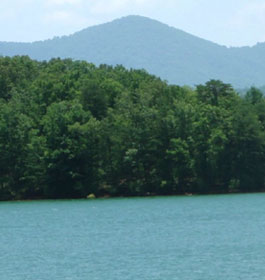 Morganton point campground in georgia for Georgia fishing license cost