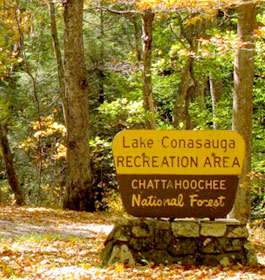 Lake Conasauga Forest Sign