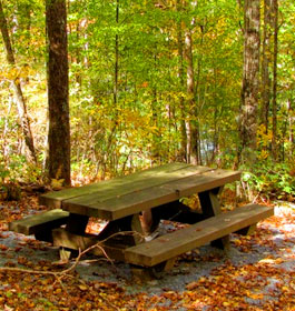 Lake Conasauga Picnic Area