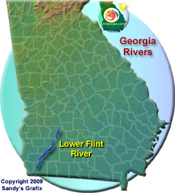 Lower Flint River Map