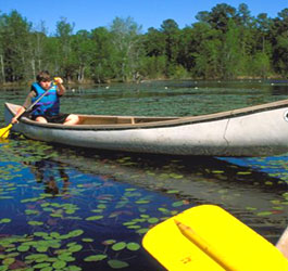 Canoeing at Magnolia Springs State Park