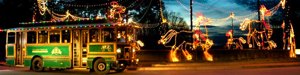 Magical Nights of Lights® at Lake Lanier Islands
