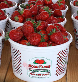 Moon Farms Country Market Strawberries