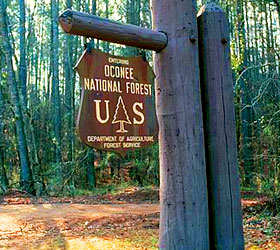 Oconee Forest Sign
