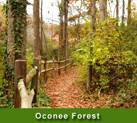 Oconee forest park in georgia forest park provides a 12 mile mountain bike trail begin the mountain bike trail at the southern entrance to the park see map and follow the signs sciox Choice Image