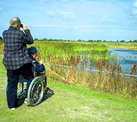 ADA Access to Okefenokee NWR for Wildlife Viewing