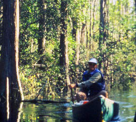 Canoeing at Okefenokee NWR