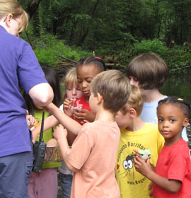 Sandy Creek Nature Center outdoor class for children
