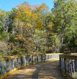 Boardwalk at Sandy Creek nature Center