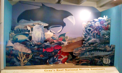 Sapelo Island Visitor Center display