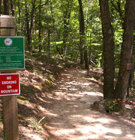 Sawnee Mountain Preserve Hiking Trail