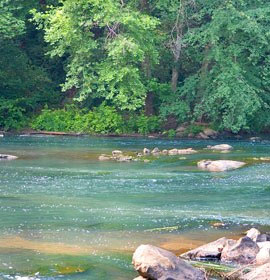 Scenic, peaceful Oconee River