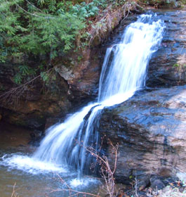 Waterfall in GA forest
