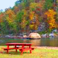 Picnic at Sprewell Bluff Recreation Area