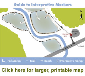 Spring Creek Wetlands Preserve Trails Map