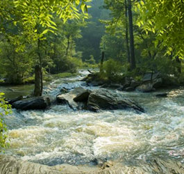 Rushing water at Sweetwater Creek State Park