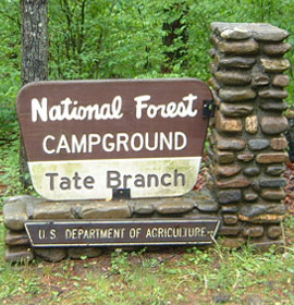 Tate Branch Campground Sign in GA forest