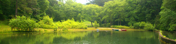 Lake at Unicoi State Park