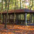 Picnic Shelter at Vogel State Park