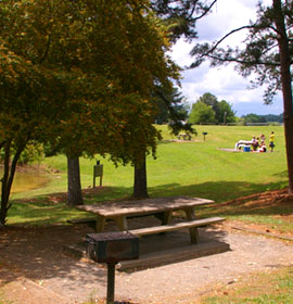 Young Deer Creek Park Picnic Area